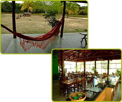Hammock and Dining Area